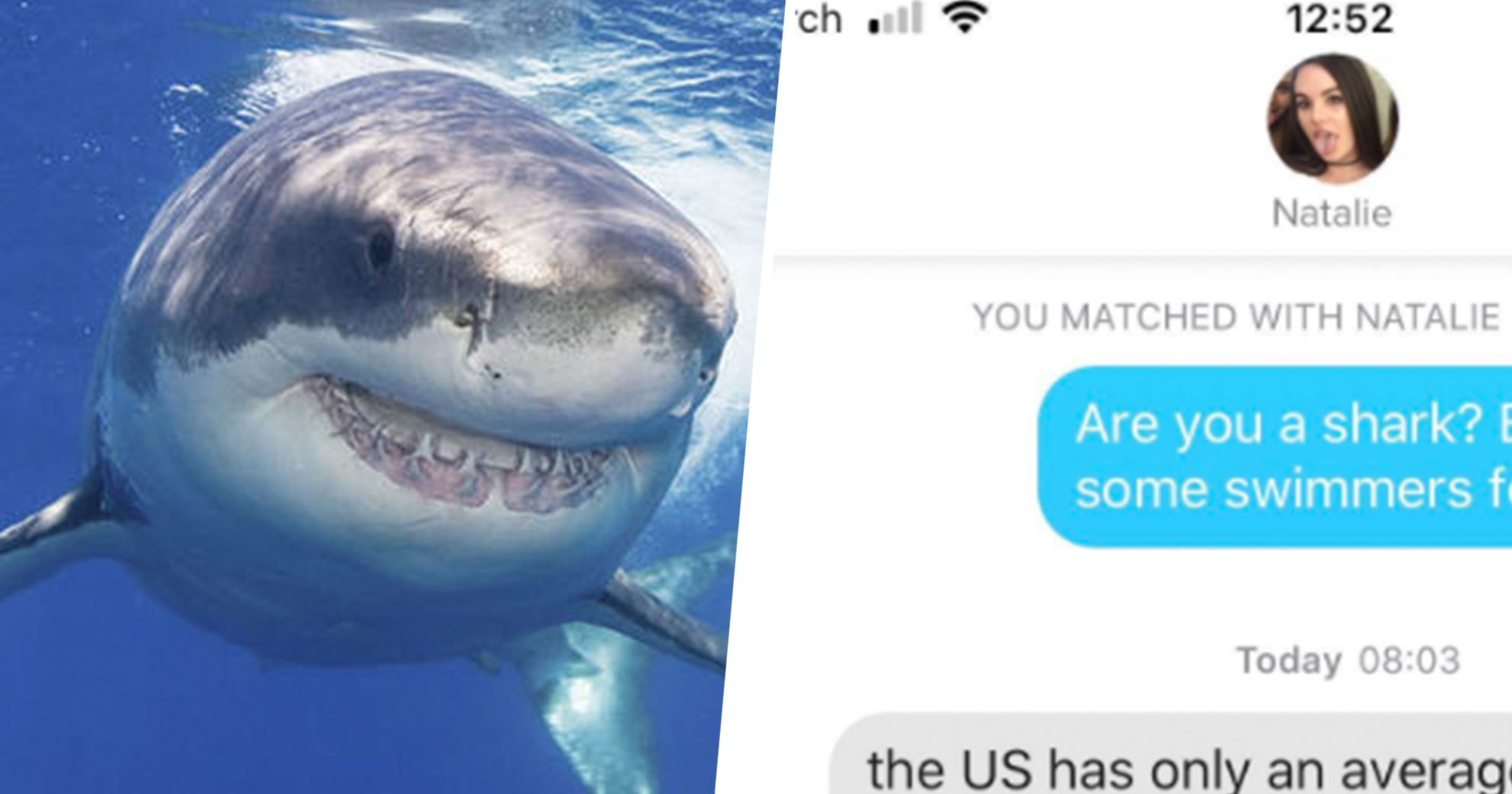 Dude Tries To Impress Tinder Match With Foul Shark-Themed Pickup Line, Spectacularly Backfires