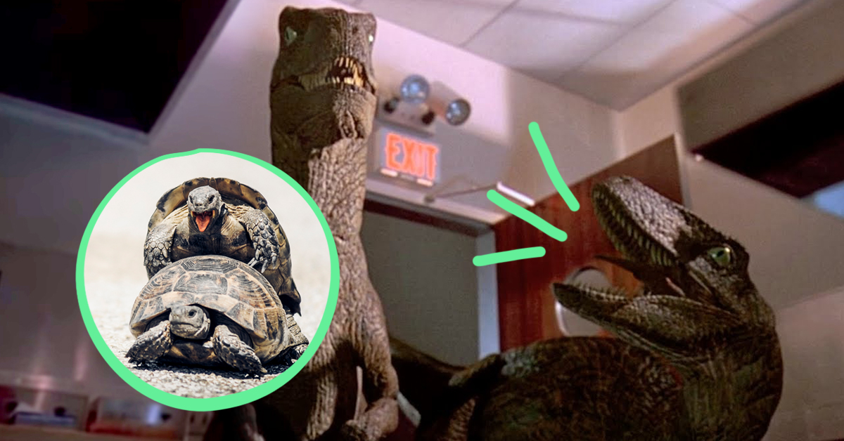 39 Utterly Random Movie Facts You Didn't Need To Know, But Here They Are Anyway