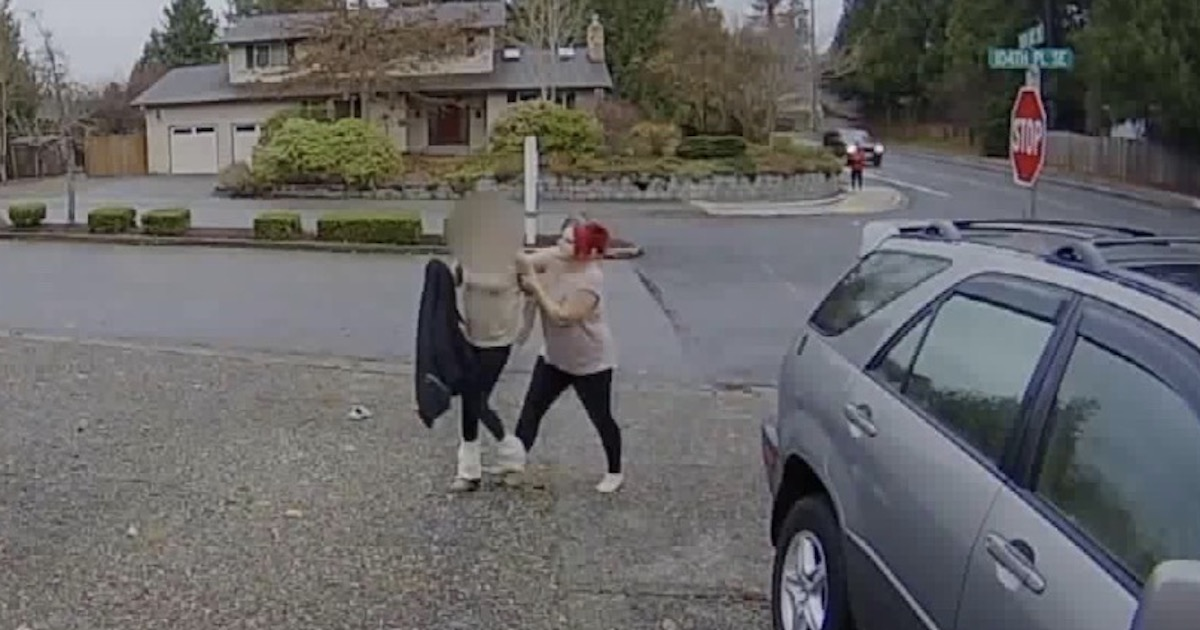 Nanny Tackles Package Thief Who Is Trying To Escape–And Becomes A Badass Internet Hero