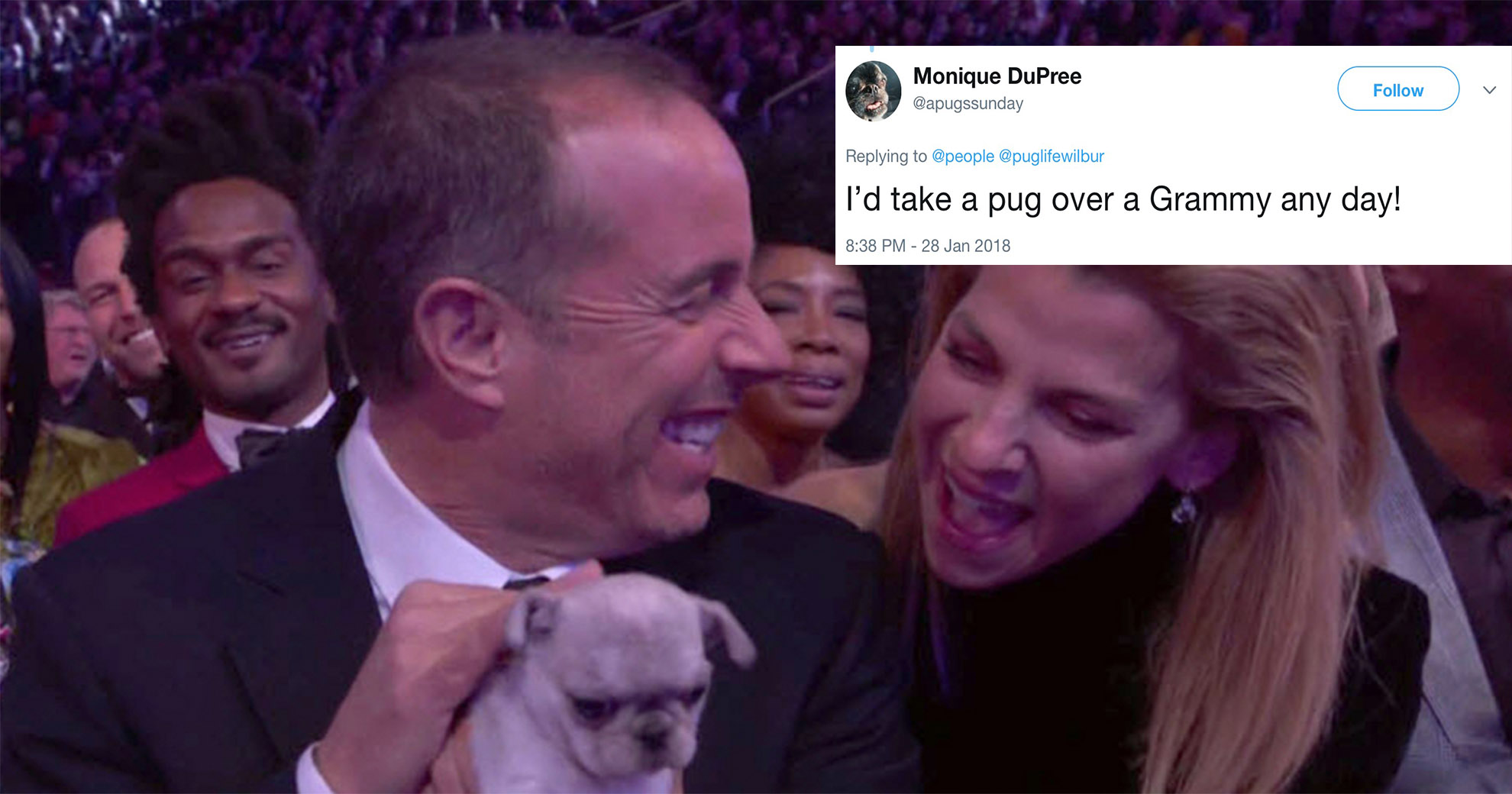 Grammys Hands Out 'Consolation Puppies' To Losers—And It Makes For Some Adorable Moments