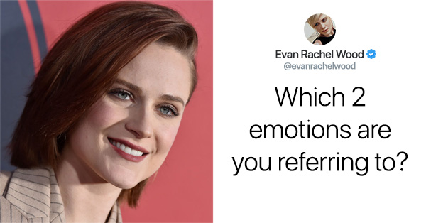 Evan Rachel Wood Just Destroyed A Twitter Troll Who Insulted Her Acting